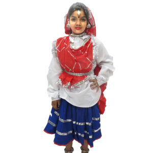 Haryanavi Dance Dress